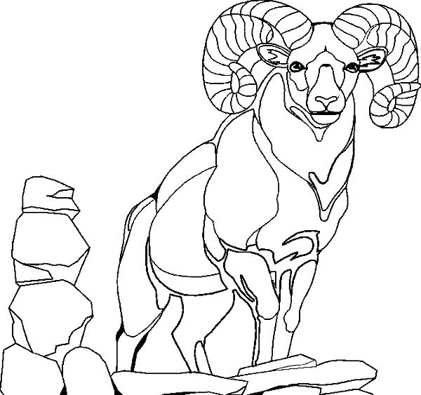 600x563 Goat Coloring Pictures Goat Coloring Pages Giraffe Goat Kids