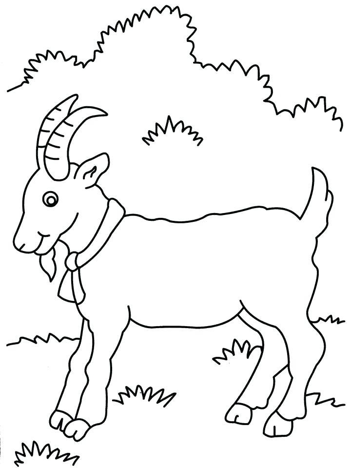 720x960 Mountain Goat Coloring Pages Preschool In Pretty Giraffe Goat Kids