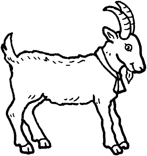 600x638 Mountain Goat Wearing Bell Coloring Pages Color Luna