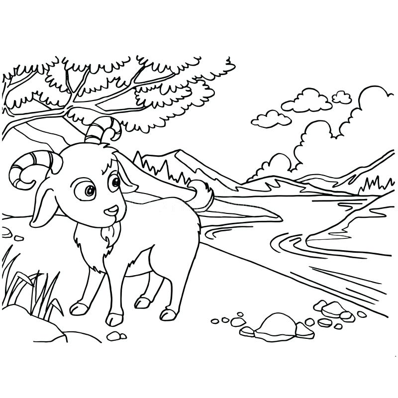 800x800 Printable Goat Coloring Page Goat Coloring Page Cute Goat Coloring