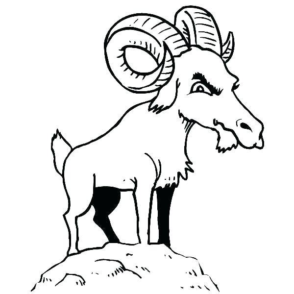 600x600 Coloring Pages Goat