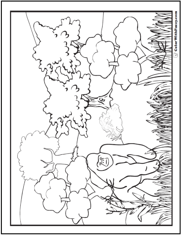 590x762 Gorilla Coloring Pages Print And Customize