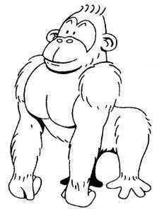 232x300 Best Gorilla Coloring Pages Images On Kindergarten