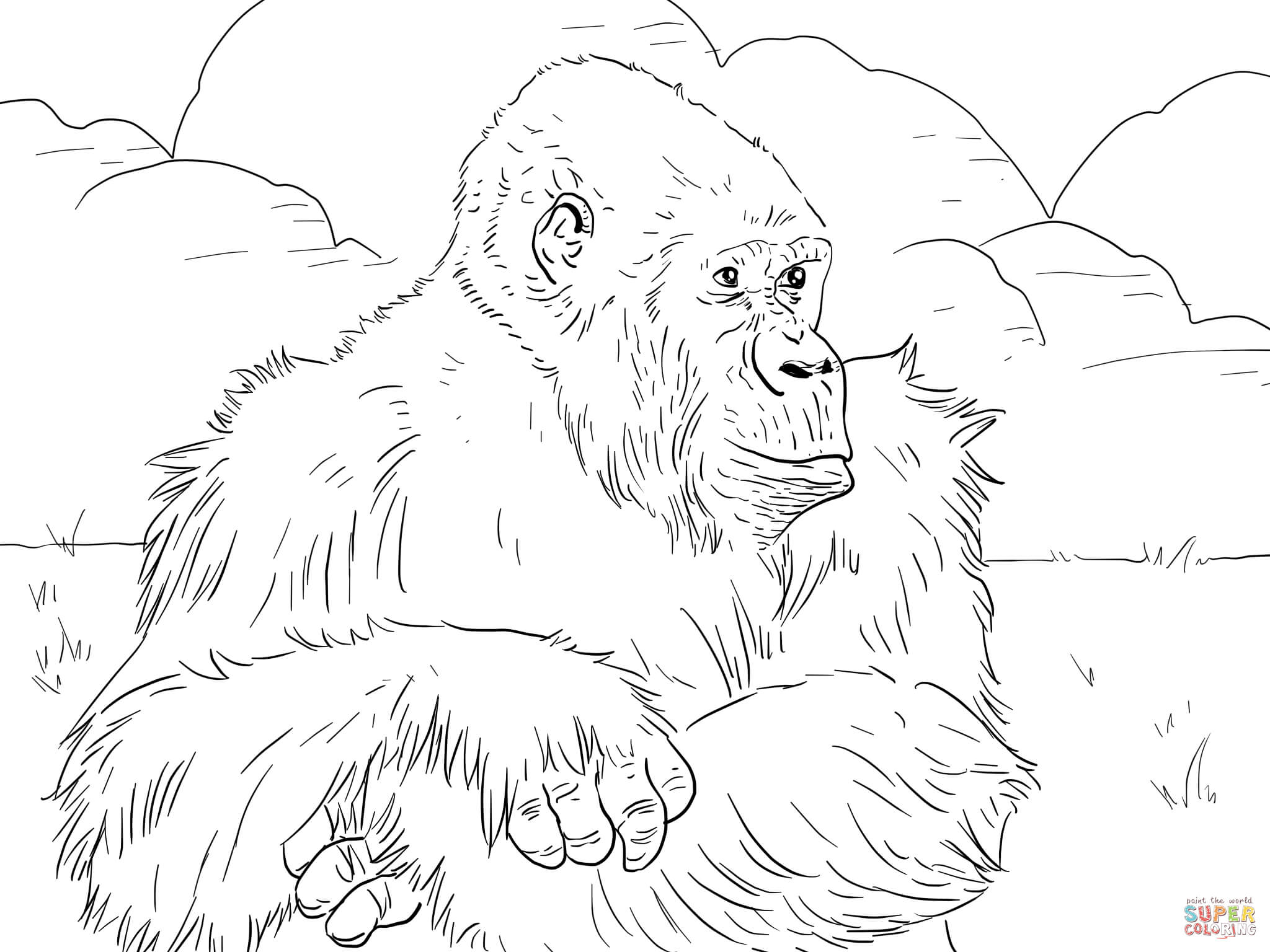 2048x1536 Mountain Gorilla Coloring Page
