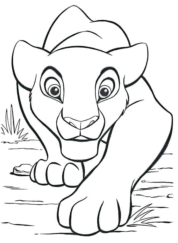 736x1003 Baby Lion Colouring Pages Printable Coloring Mountain Lion