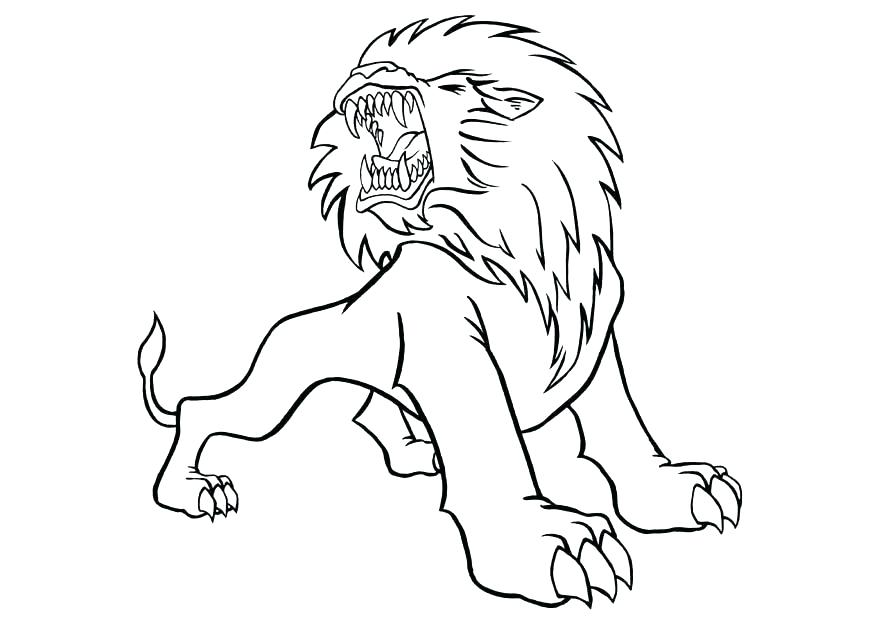 875x620 Mountain Lion Coloring Pages Lion Coloring Pages Packed With Lion