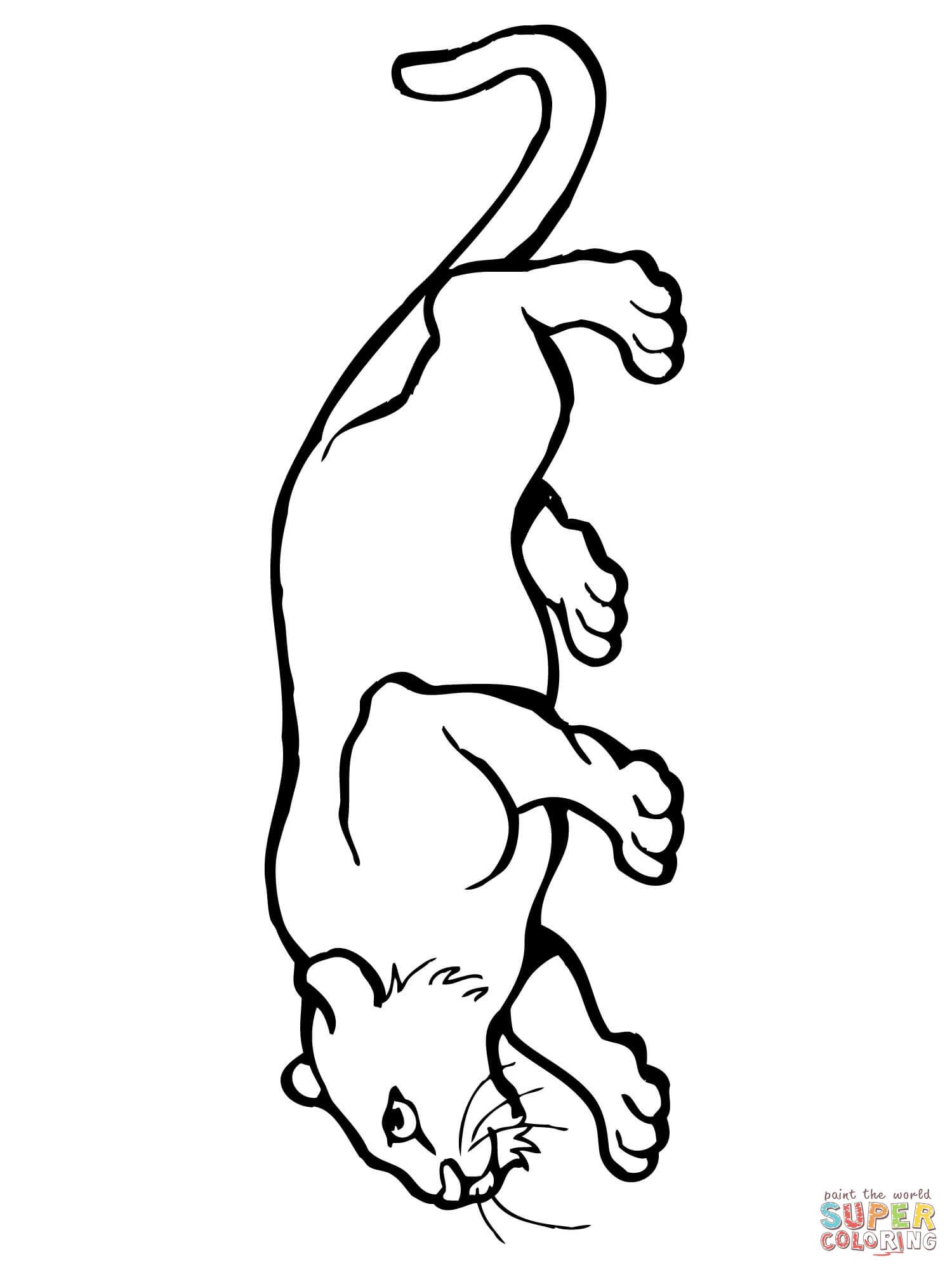 1500x2000 Mountain Lion Coloring Page Free Printable Coloring Pages