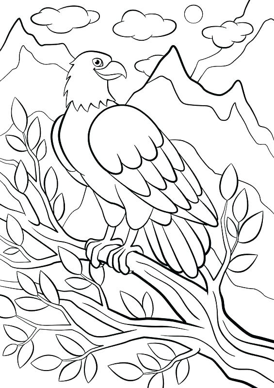 565x800 Mountain Coloring Pages