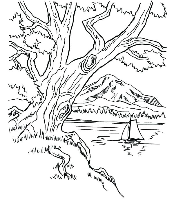 600x734 Mountain Coloring Pages Mountain Coloring Pages Image Mountain