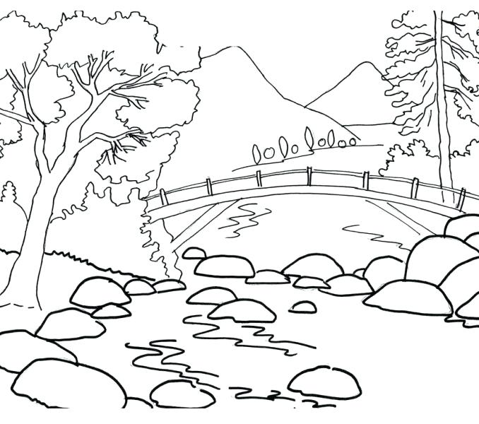 678x600 Scenery Coloring Pages Beautiful Coloring Pages Of Flowers
