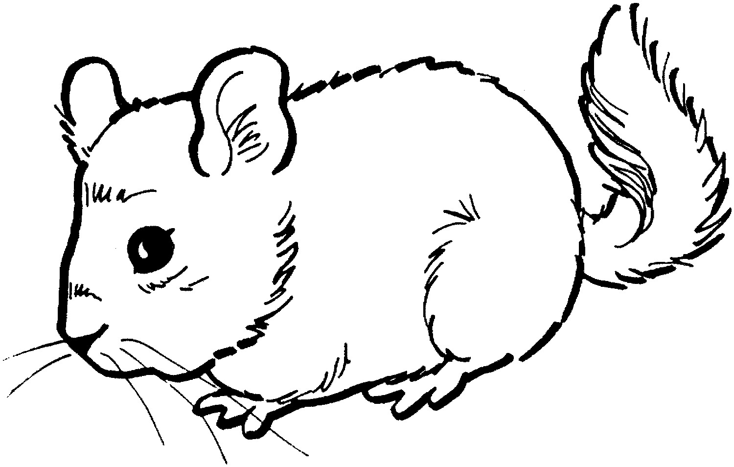 1500x954 Free Printable Mouse Coloring Pages For Kids Coloring Page Mouse