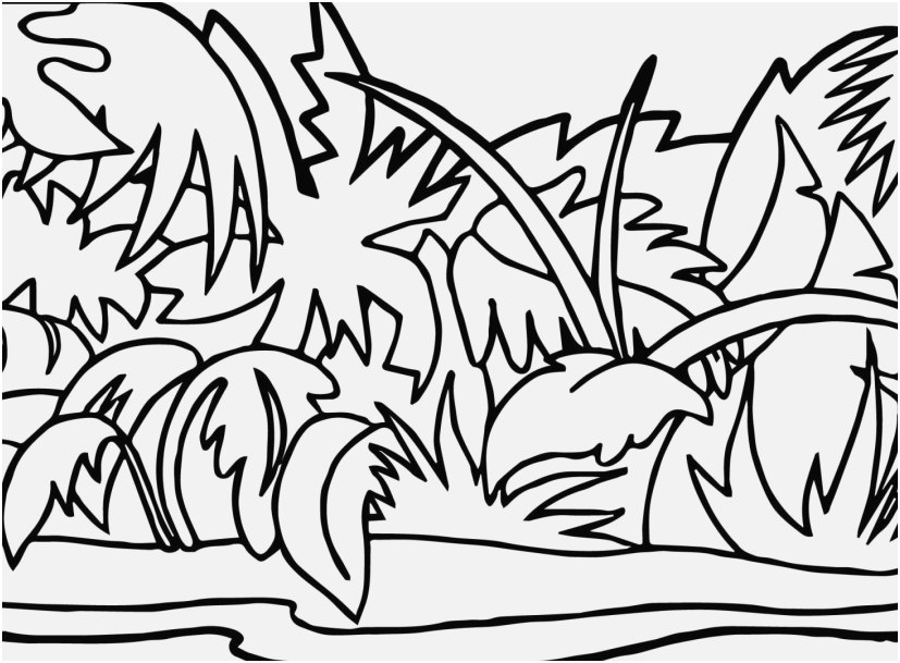 827x609 Coloring Pages Jungle Pic Mowgli And Shere Khan The Jungle Book