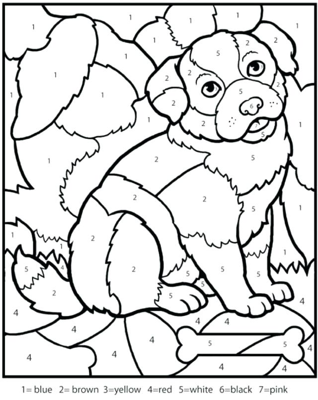 640x804 Multiplication Coloring Page Dog Color