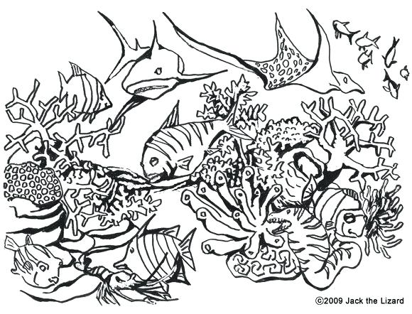 580x442 Coloring Pages Christmas Free Best Mural Images On Books Never