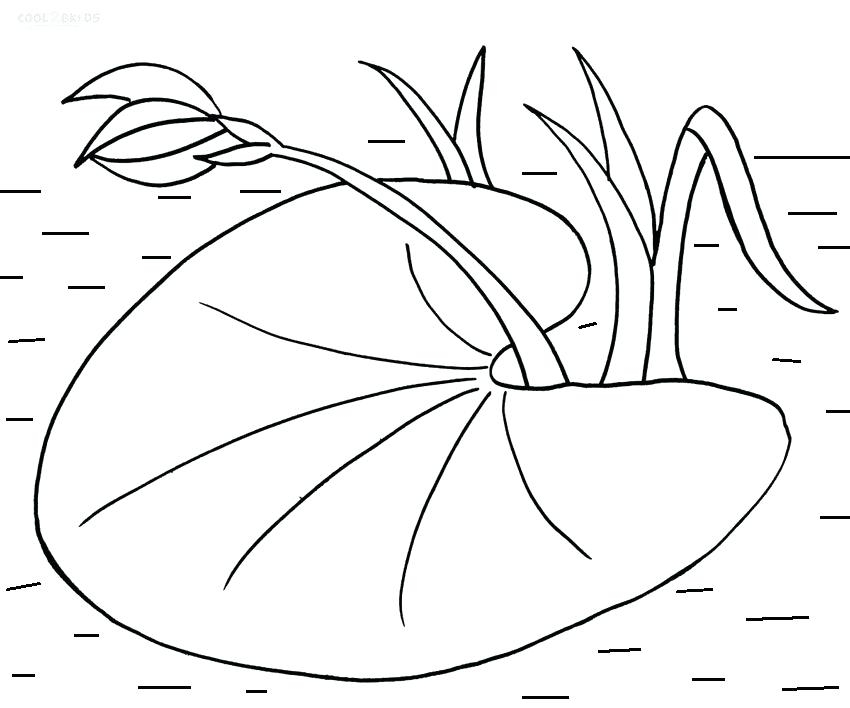 850x708 Coloring Pages Online Flowers Printable Lily Pad For Kids Mural