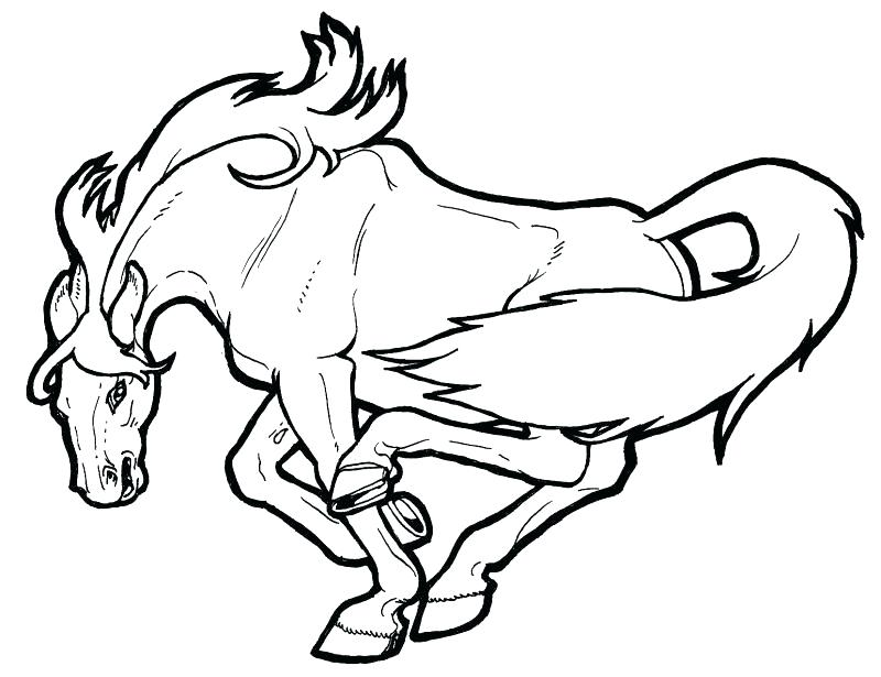 800x615 Mustang Horse Coloring Pages Carousel Horse Coloring Pages Free