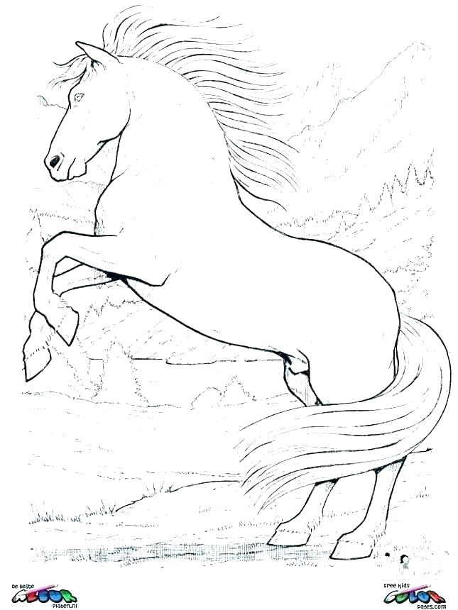 645x860 Mustang Horse Coloring Pages Printable Wild Horse Coloring Pages