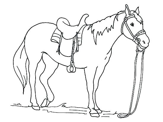 550x412 Free Printable Carousel Horse Coloring Pages Mustang Adult Book