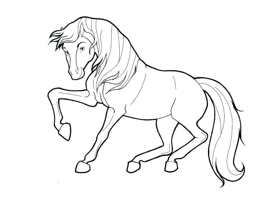 878x638 Free Printable Horse Coloring Pages For Adults Horse Coloring