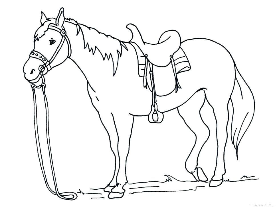 971x728 Horse Coloring Pages Printable As Well As Mustang Horse Coloring