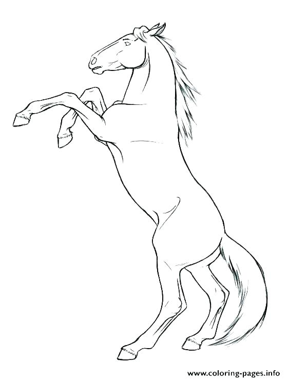 561x739 Horse Coloring Pages To Print Free Horse Coloring Pages Mustang
