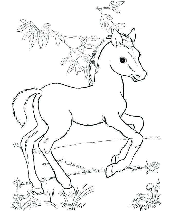 670x820 Mustang Horse Coloring Pages Mustang Horse Coloring Pages Best