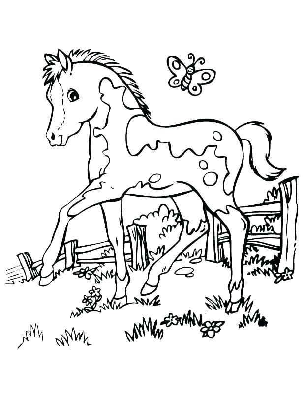 618x800 Mustang Horse Coloring Pages Printable Cute Beautiful Free Print