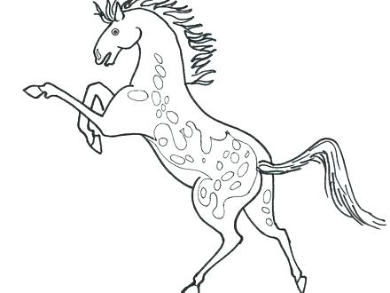 440x330 Beautiful Horse Coloring Pages