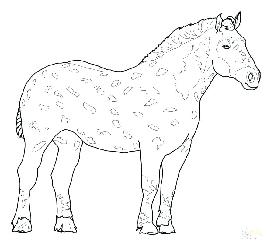 878x805 Coloring Pages Of Horses Printable In Addition To Coloring Pages