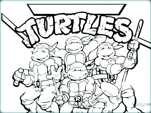 640x479 Turtle Coloring Pages Printable