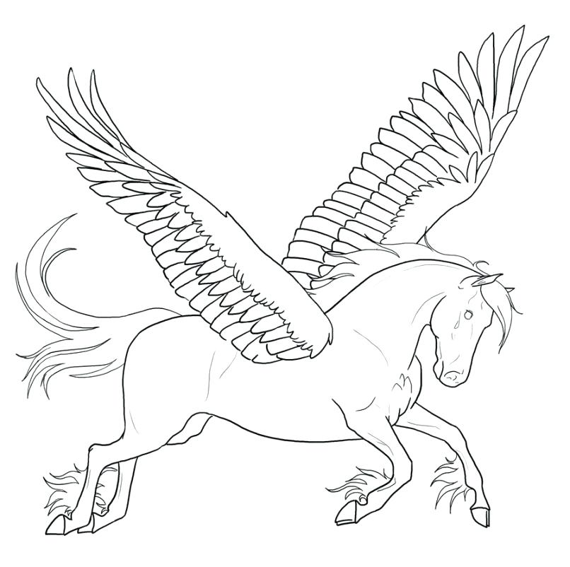 806x802 Pegasus Coloring Pages Coloring Page My Little Pony Pegasus