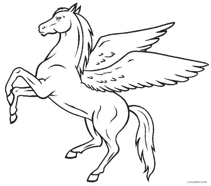728x642 Pegasus Coloring Page