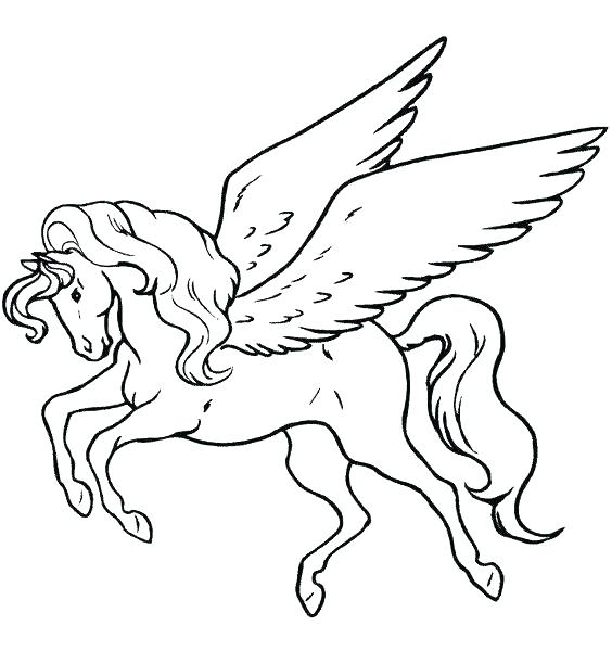 564x600 Free Pegasus Coloring Pages Free Coloring Pages Pegasus Free