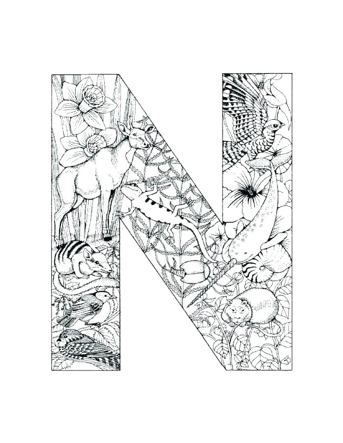 698x903 Letter N Coloring Pages Letter N Coloring Letter N Coloring Page
