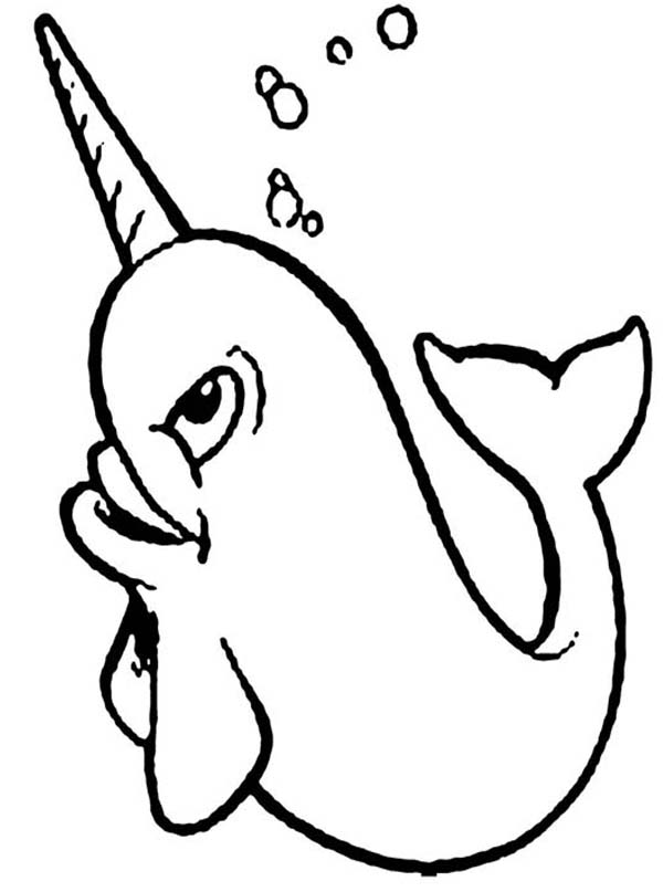 600x807 Happy Narwhal Coloring Page