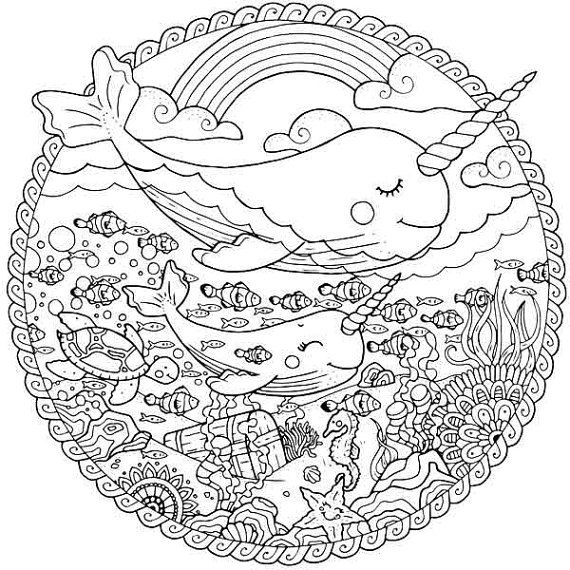 570x570 Narwhal Adult Coloring Pages Sea Life Coloring Page Whale