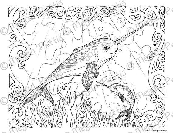 570x440 Narwhal Family Adult Coloring Book Page Whale Unicorn