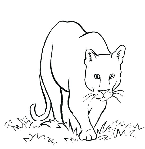 612x630 Mountains Coloring Page Coloring Pages Mountains Coloring Pages