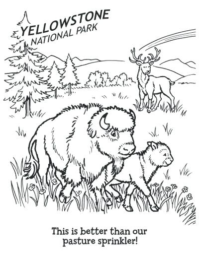 400x518 Yellowstone National Park Coloring Pages Awesome National Park