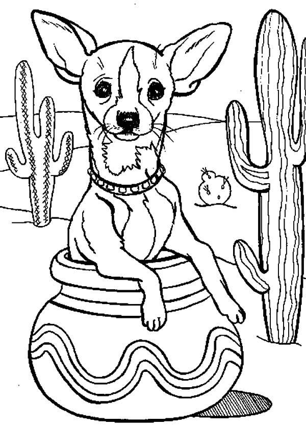600x837 Cactus Tree And Chihuahua Dog Inside Pottery Coloring Pages