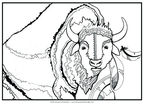 500x364 Native American Symbols Coloring Pages Printable Buffalo