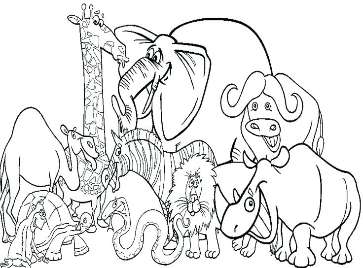 736x544 Nativity Animals Coloring Pages