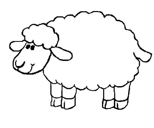 500x416 Sheep Coloring Pages Preschool Nativity Animals