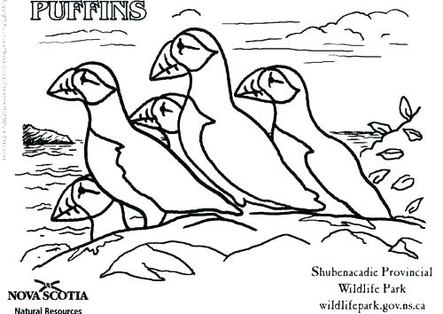 500x354 Natural Resources Coloring Pages Natural Resources Coloring Pages