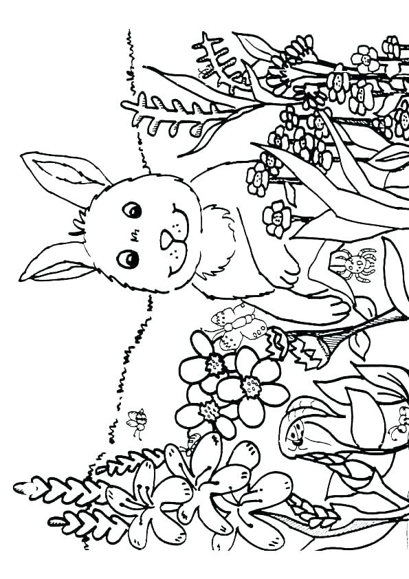 595x842 Nature Coloring Pages For Kids Deepart