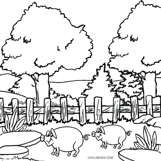 567x567 Nature Coloring Page Nature Coloring Pages Preschool Nature