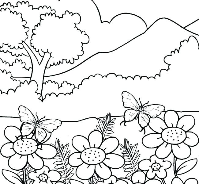 Nature Coloring Pages For Preschoolers at GetDrawings.com   Free for ...