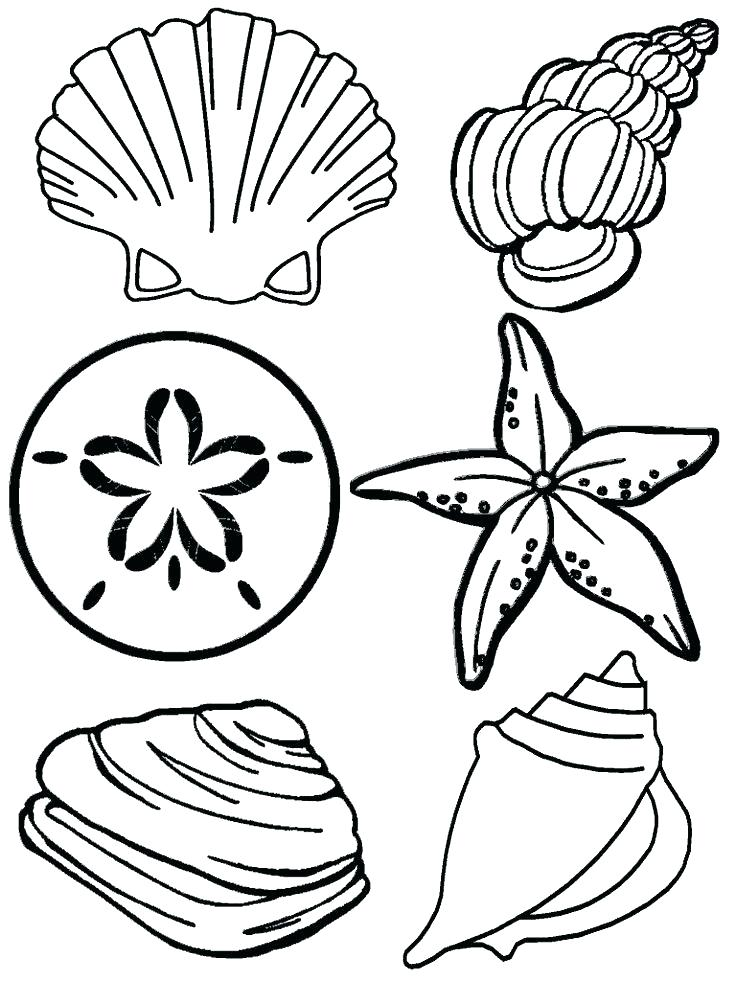 736x981 Nautical Star Coloring Pages Deepart