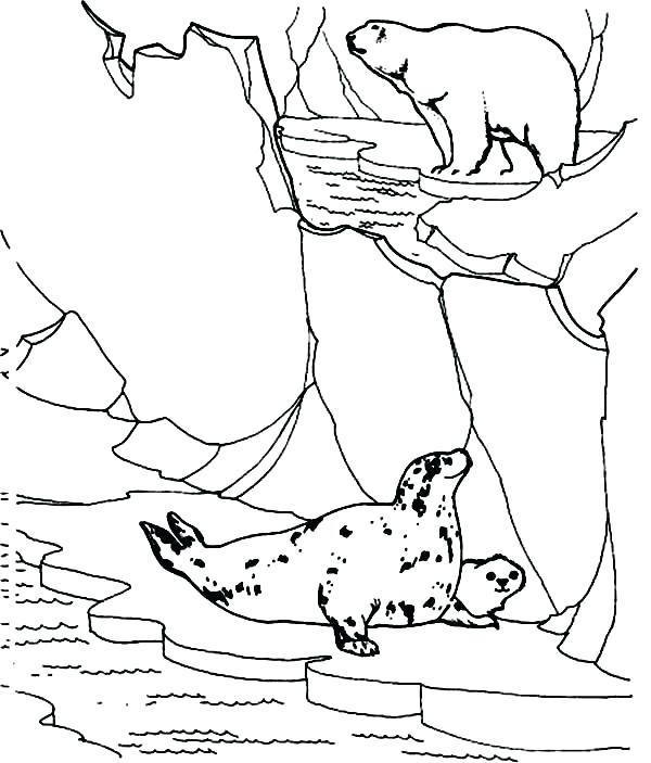 Navy Seal Coloring Pages