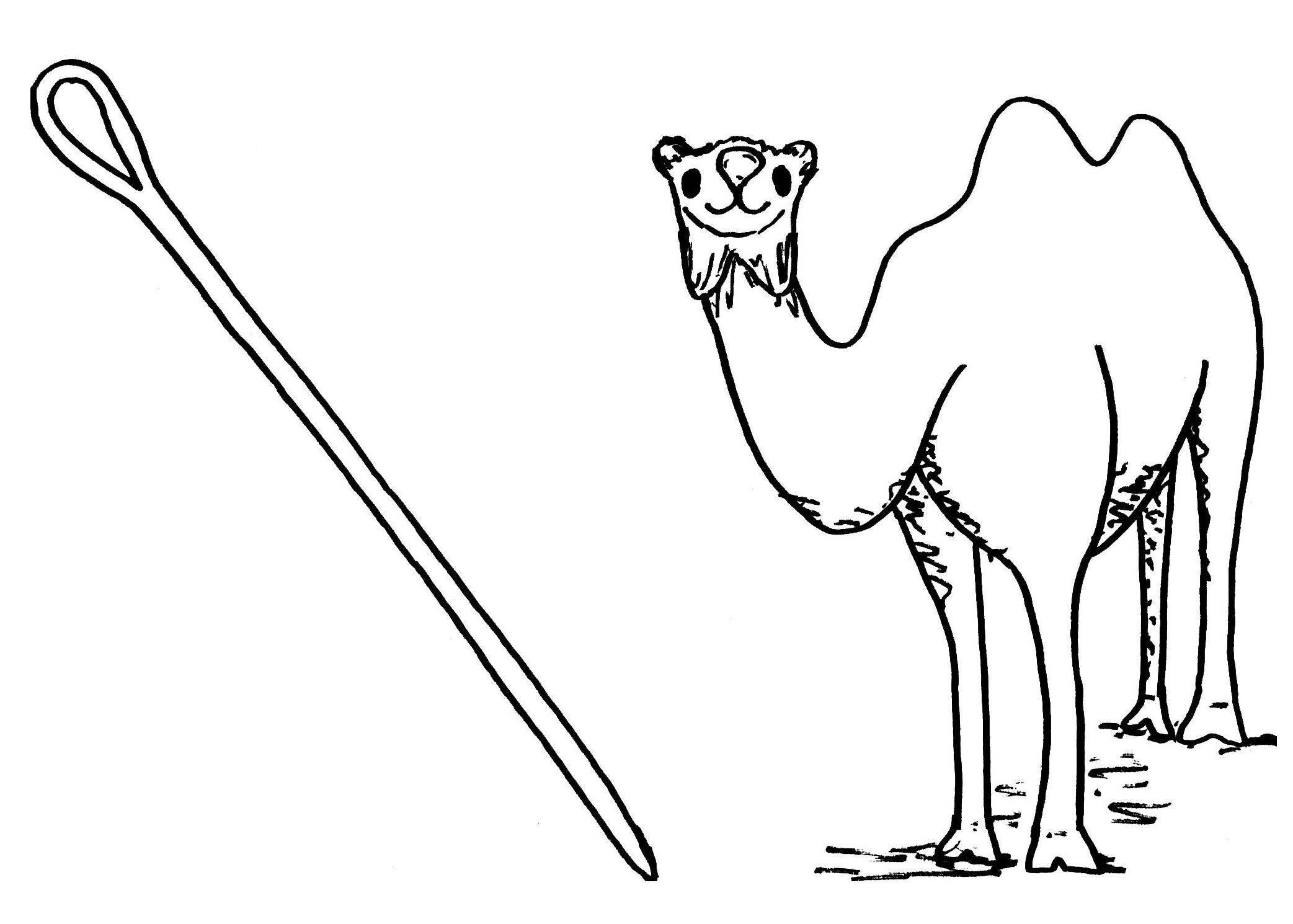2085x1490 Camel And Needle Camels